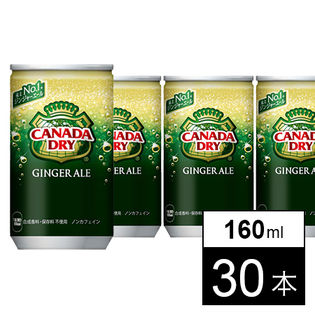 【30本】カナダドライジンジャーエール 160ml缶