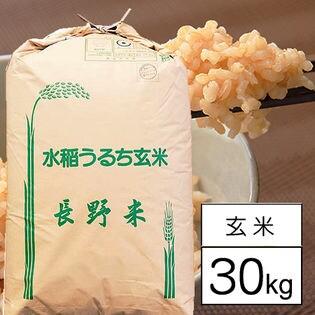 【30kg】 令和元年産長野県伊那産コシヒカリ 特別栽培米 1等 玄米30kg x 1袋