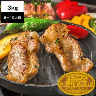 【3.0kg(3種×5セット)】ブランド豚 麓山高原豚 焼肉 A セット 9~10人前
