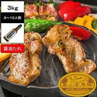 【3kg(3種×5セット)】ブランド豚 麓山高原豚 焼肉 A 醤油たれ セット 9~10人前