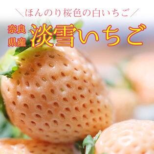 【2パック】奈良県産 淡雪いちご