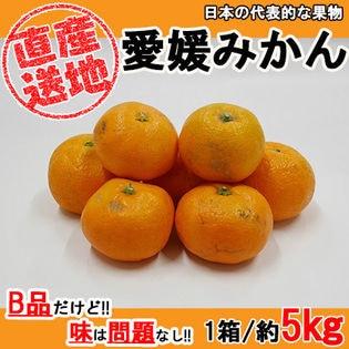 【5kgセット】日本を代表する果物 愛媛みかん (季節限定商品) 産地直送でお届け (B品)
