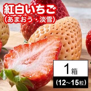 福岡・佐賀産 紅白いちごギフト箱(あまおう・淡雪)12-15粒