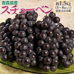 【計1.5kg(5~8房)】お試し葡萄セット♪青森県産黒ぶどう スチューベン