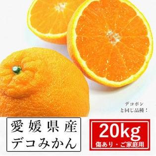 【約20kg】愛媛県産 デコみかん(ご家庭用・傷あり)