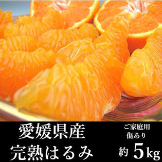 【約5kg】愛媛県産 完熟はるみ(ご家庭用・傷あり)