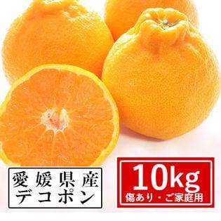 【約10kg】愛媛県産 デコポン(ご家庭用・傷あり)