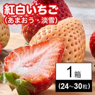 福岡・佐賀産 紅白いちごギフト箱(あまおう・淡雪)24-30粒
