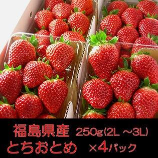 【約1kg(約250g×4パック)】福島県産とちおとめ(いちご)