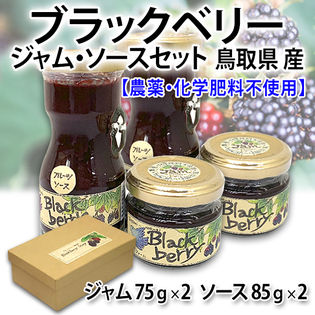 【4個(各2個)】鳥取産 ブラックベリージャム・ソースセット