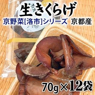 【70g×12袋】 京都産 生きくらげ(キクラゲ) 京野菜「洛市」シリーズ
