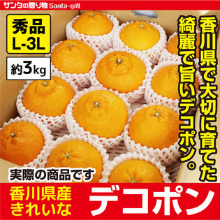 【約3.0kg(2L-3L)】瀬戸内香川県産 デコポン(秀品) 代表的な柑橘類  高い糖度と 酸味