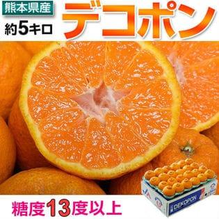 【5kg(15-24玉)】本場JA熊本うき 高糖度 デコポン 正規品