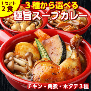 【2食(600g)】北海道極旨 やわらかチキンスープカレー【B】