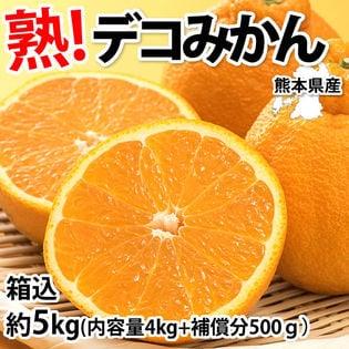 【箱込約5kg】熊本県産 デコみかん(傷あり、不揃い、ご自宅用)