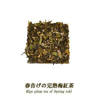 【5ティーバッグ】春告げの完熟梅紅茶 便利なジップ付き袋入り