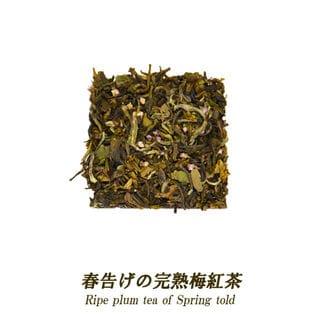 【20ティーバッグ】春告げの完熟梅紅茶 便利なジップ付き袋入り