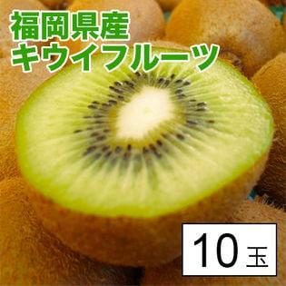 【約700g(約70g×10)】福岡県産キウイフルーツ10玉