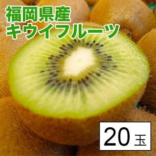 【約1.4kg(約70g×20)】福岡県産キウイフルーツ 20玉