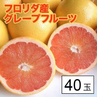 【約10kg(約250g×40)】フロリダ産グレープフルーツ40玉