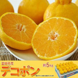 【5kg(18-24玉)】愛媛県三崎産 高糖度 デコポン L-3Lサイズ