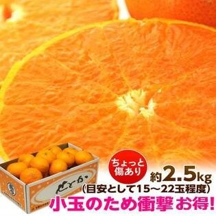 【2.5kg】味ロマンを生み出す、JA長崎せいひの「せとか」ご家庭用