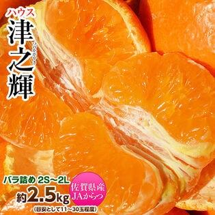 【2.5kg(11-30玉)】プチプチ新食感!?佐賀県産JAからつの「津之輝」