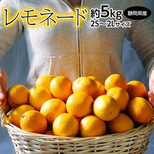 【約5kg(2S-2L)】丸ごと食べれる甘いレモン!?静岡県産レモネード
