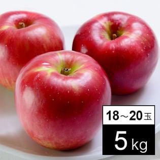 【計5kg箱】旬の林檎のジョナゴールド 18-20玉