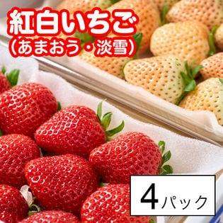 【4パック】福岡・佐賀産 紅白いちご(あまおう・淡雪)