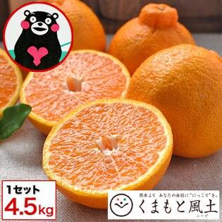 【4.5kg】デコみかん※家庭用(傷あり サイズ不選別)