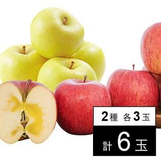 【6玉/各3玉】[優品]山形県天童産りんご 王将ふじ&金将ふじ
