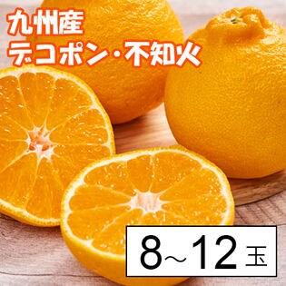 【約2.3kg箱】九州産デコポン・不知火8-12玉