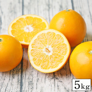 【5kg】ダイヤオレンジ ※ご家庭用(サイズ不揃い・枝傷・葉傷・黒点等あり)