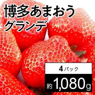 【約270g×4パック】福岡限定いちご 博多あまおうグランデ