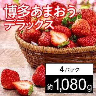 【約270g×4パック】福岡限定いちご 博多あまおうデラックス