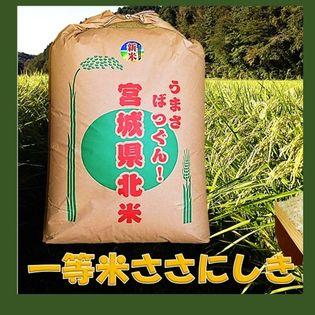 30kg【令和元年】宮城県産 ささにしき玄米