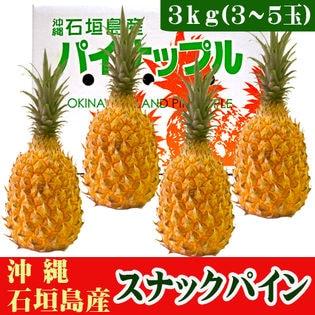 【送料無料】石垣島産 スナックパイン(ボゴールパイン) 3~5玉 約3kg