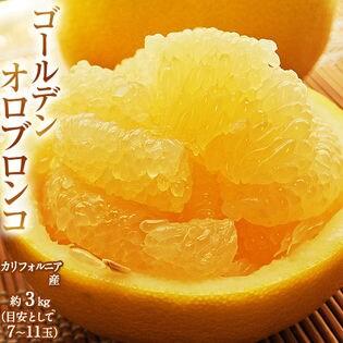 【約3kg(7-11玉)】最高糖度16.2度!完熟 ゴールデン オロブロンコ