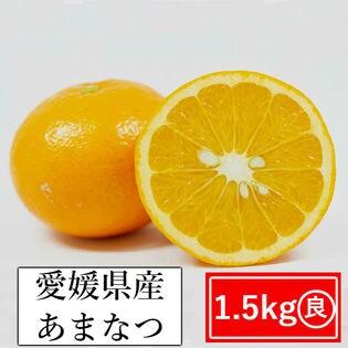 【約1.5kg】愛媛県産 甘夏(あまなつ)(良品)