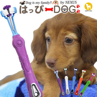 【ブルー/ワンサイズ】犬用歯ブラシ 歯ブラシ 歯磨き 歯 デンタルケア