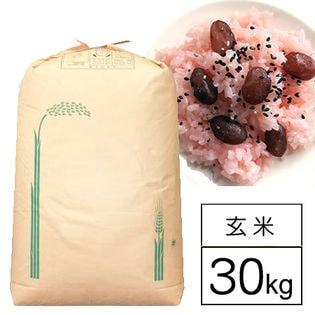 【30kg】 もち米 令和元年産山梨県産こがねもち 1等 玄米30kg x 1袋