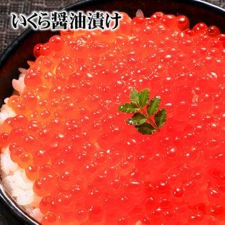 【480g(80g×6個)】北海道産ササヤのイクラ