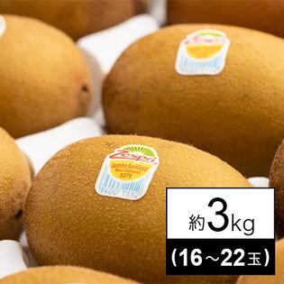 【約3kg箱】ゼスプリゴールドキウイ(大玉)(16-22玉)