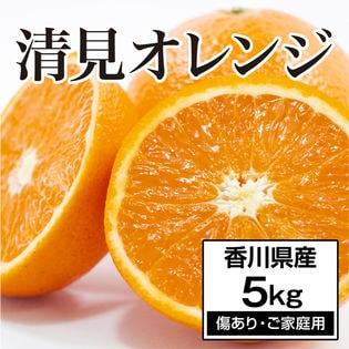 【約5.0kg】香川県産 清見オレンジ (ご家庭用・傷あり)和製オレンジ