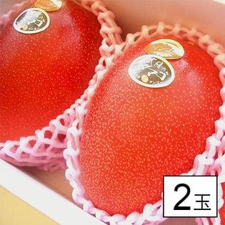 【2玉】宮崎産 完熟マンゴー 太陽のタマゴ (1玉約350g-)