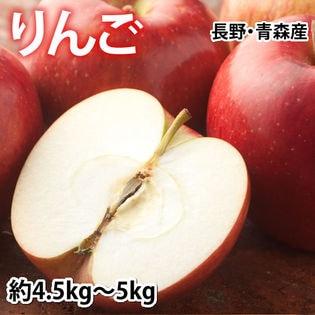 【約5kg(4.5~5kg)】りんご《個数・品種おまかせ》(ご家庭用・傷あり) 長野・青森産