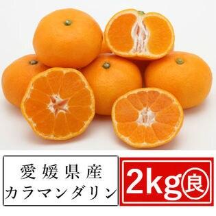 【予約受付】4/13~順次出荷【約2kg】愛媛県産 カラマンダリン(良品)