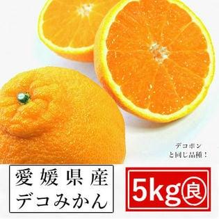 【約5kg】愛媛県産 デコみかん(良品)