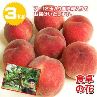 【予約受付】7/1~順次出荷【3kg】山梨 桃名人笠井農園の桃 ※7~12玉